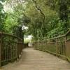 Maranga Trail