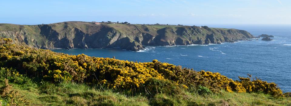 Channel Islands (UK; new)